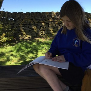 Summer Sketching in the Sun