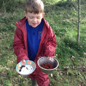 MM Forest School