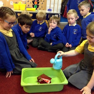 KS1 Science