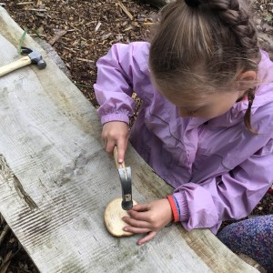 Wonderful Forest School